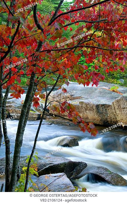 West Branch Penobscot River channel by Abol Falls, Penobscot River Corridor, Maine