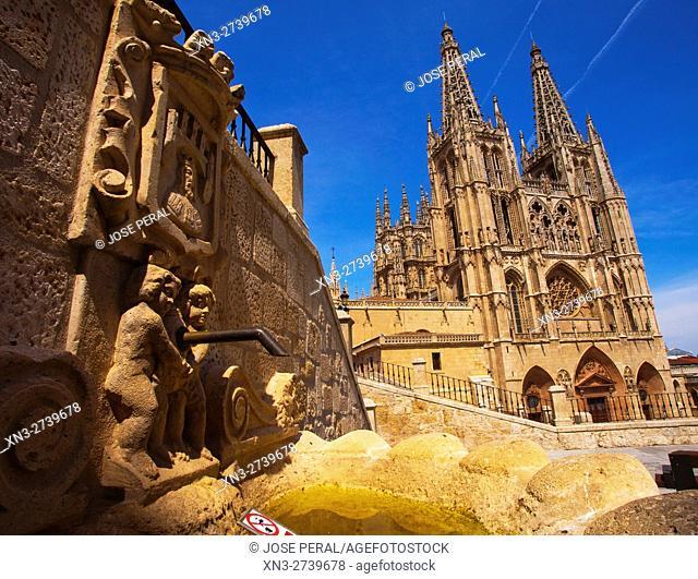 Fountain and Cathedral of Burgos, Burgos city, Way of St. James, Castilla y León, Castile and León, Spain, Europe
