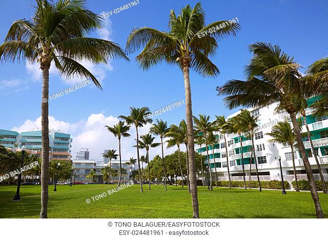 Miami south Beach park with palm trees in Florida USA