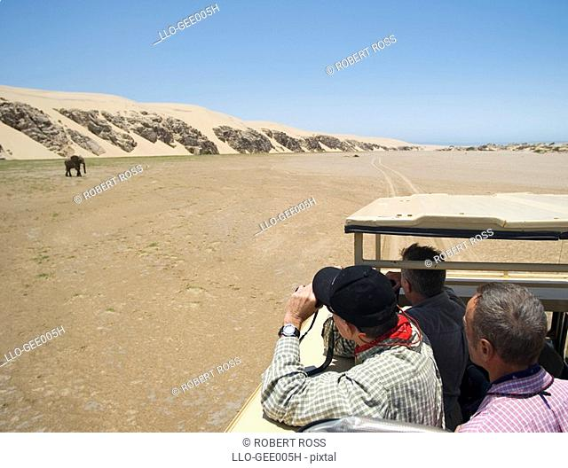 Tourists on a Desert Safari Viewing a Lone Elephant Loxodonta africana  Hoarusib River Valley, Skeleton Coast National Park, Kaokoland, Namibia, Africa
