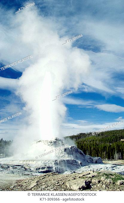 Castle Geyser erupting in Yellowstone National Park. Wyoming, USA