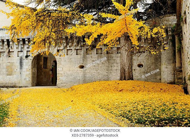 entrance to Chateau Bourdeilles in autumn, Bourdeilles, Dordogne Department, Aquitaine, France