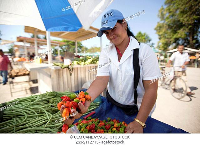 Young vendor selling vegetables at the open-air market, Santa Clara, Villa Clara Province, Cuba, West Indies, Central America