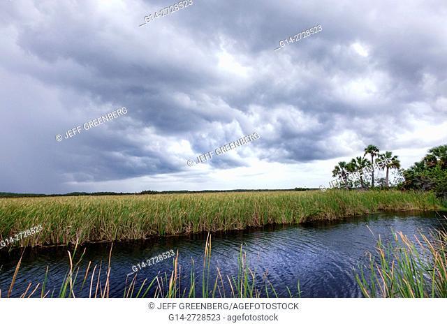 Florida, Tamiami Trail, Florida Everglades, Everglades National Park, tropical wetland, environment, ecosystem, vegetation, sawgrass, marsh, canal, storm clouds