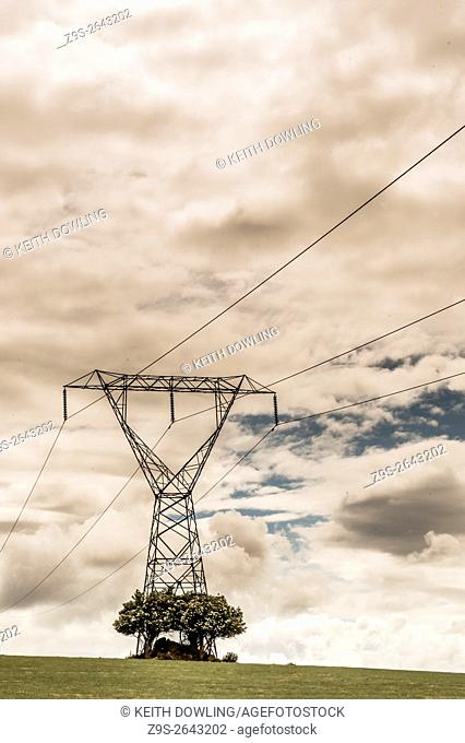 220kv Pylon in farmland with trees. Rathanna, Borris, County Carlow, Ireland