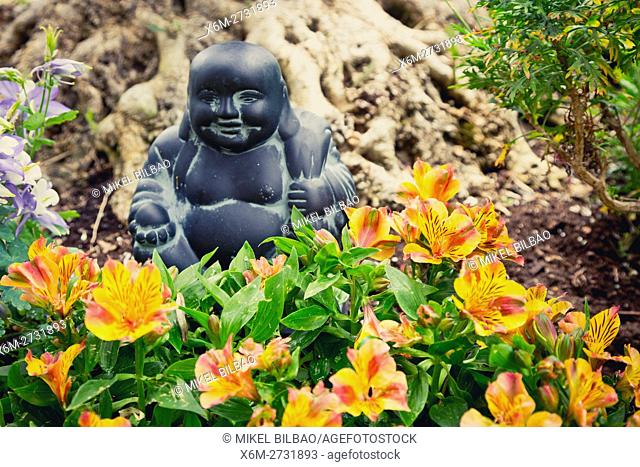 Gardening flowers of daylily (Hemerocallis) and Buddha figure