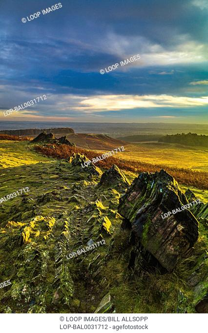 The craggy rocks of Charnwood Forest are of volcanic origin formed over 600 million years ago in the Precambrian era