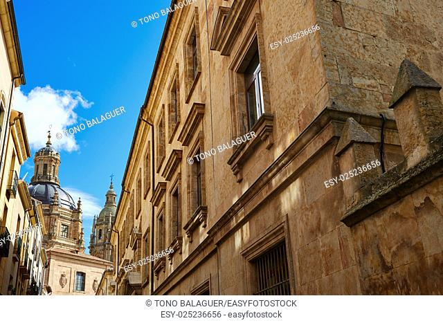 Salamanca university and Clerecia church in Spain