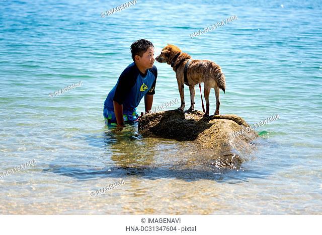 Swimming Shiba Inu and Kids in Sea