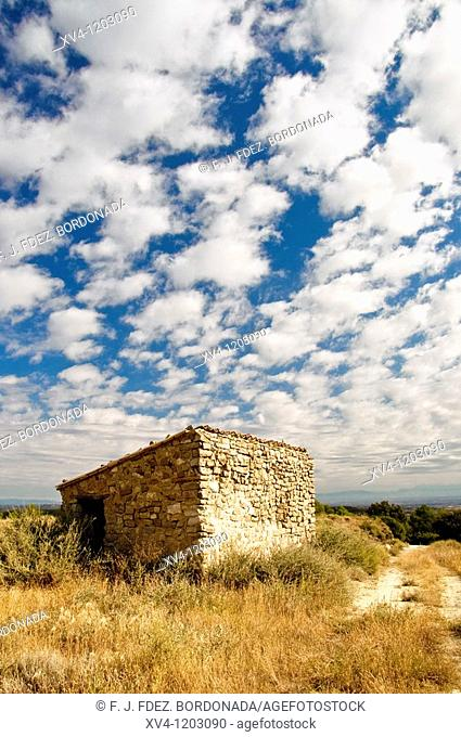 Monegros land in summer  Aragon  Spain