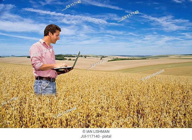 Farmer Standing In Wheat Field Using Laptop Computer