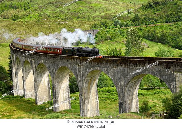 Heritage Jacobite coal fired Steam Train Hogwarts Express used in Harry Potter films at Glenfinnan viaduct in the Scottish Highlands Scotland UK