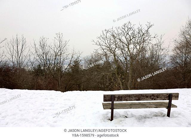 A lone bench in a cold, snowy location  Prague, Czech Republic