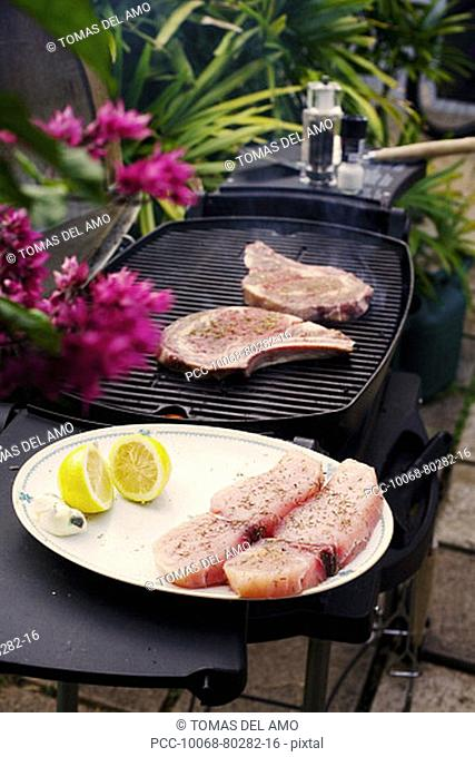 Barbecue scene, grill with steaks on and fish ready to go