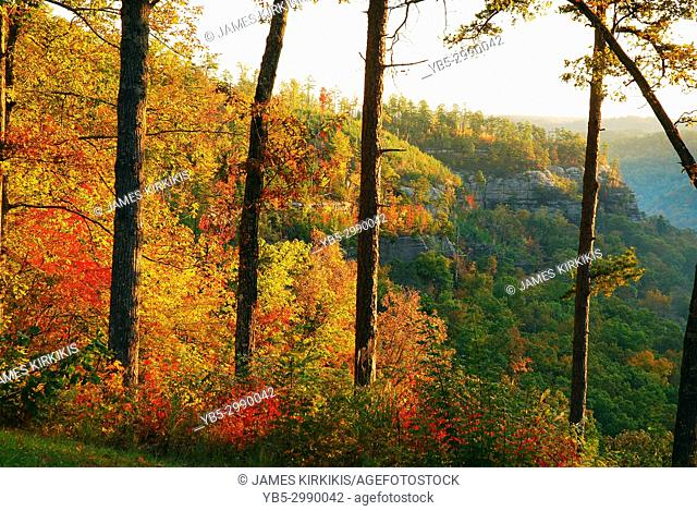 The Red River Gorge in Kentucky displays a vibrant hue of fall foliage