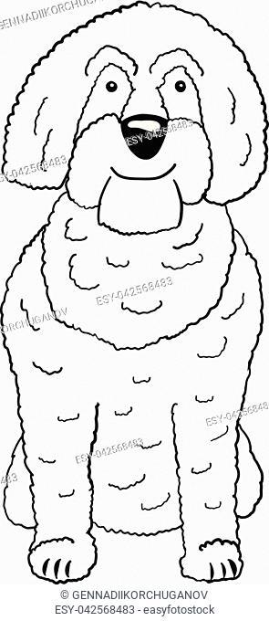 Labradoodle cartoon dog icon isolated on white background