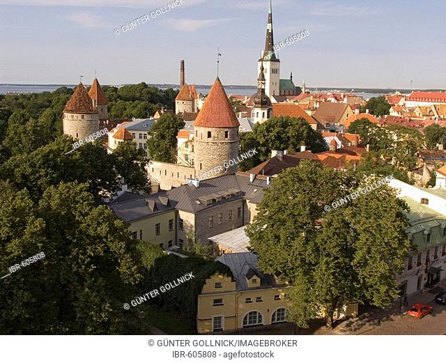 View of the historic centre and tower of St. Olai Church in Tallinn, Estonia, Europe