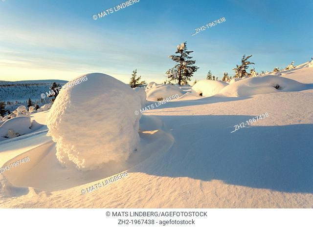 Winter landscape on mount Hirvas in February in afternoon sunlight in Gällivare, swedish lapland
