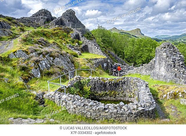 Castell y Bere, Dysynni Valley, Gwynedd, Wales
