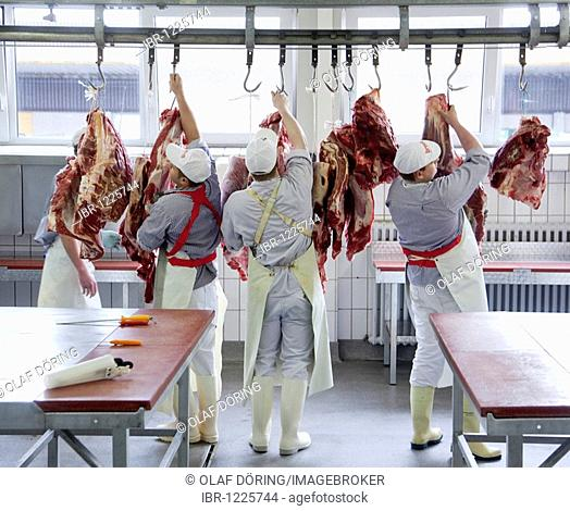 Master butcher trainees, cutting hindquarters of beef to be sent to stores, education center of the Bildungsstelle im Frischezentrum Essen e.V