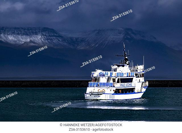 Whale whatching ship departing from Grandi, Old Harbour of Reykjavik, Iceland