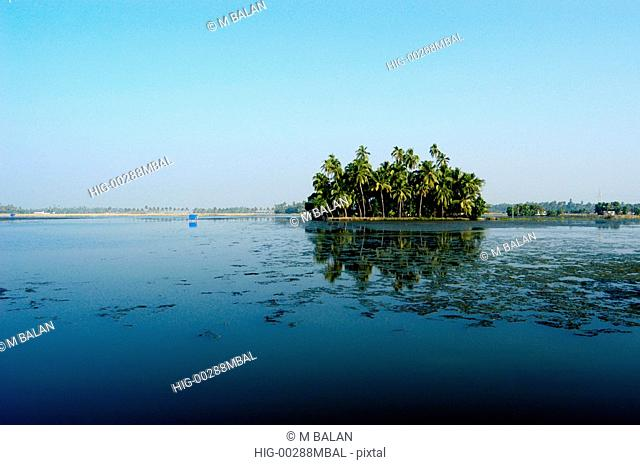 ISLAND WITH COCONUT TREES, BACKWATERS NEAR KOCHI, KUMBALANGHI