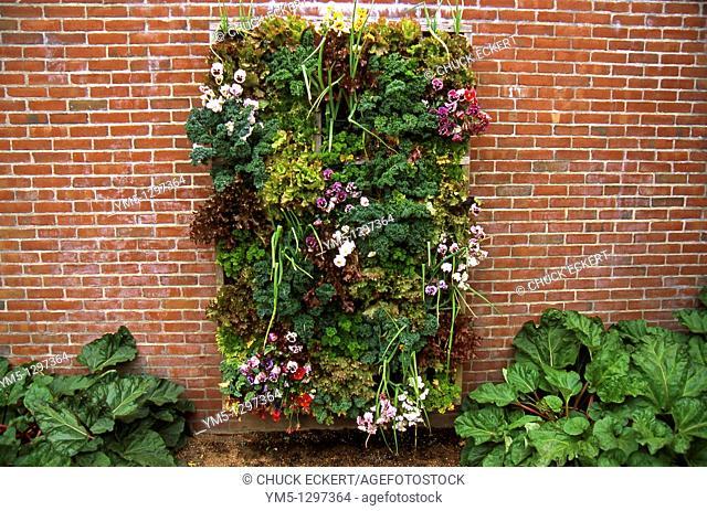 Verticle Wall Garden