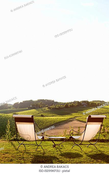 Chairs overlooking vineyard, Monterotondo, Italy