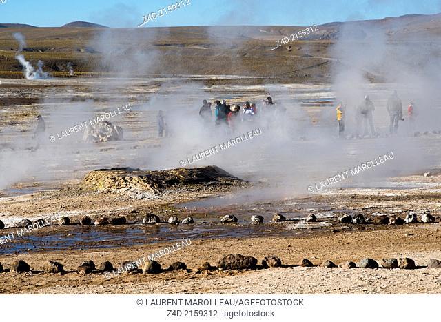 Geysers El Tatio, Atacama Desert, Antofagasta Region, Chile, South America