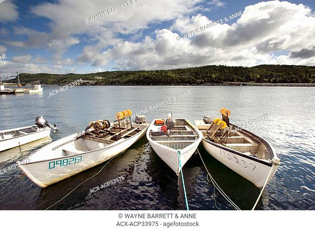 Boats tied up in Plate West Cove, Newfoundland and Labrador, Canada