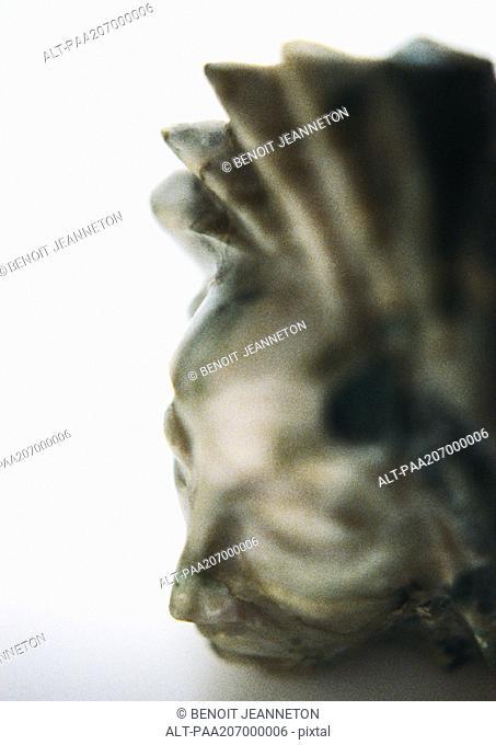 Stone head, sculpture, close-up