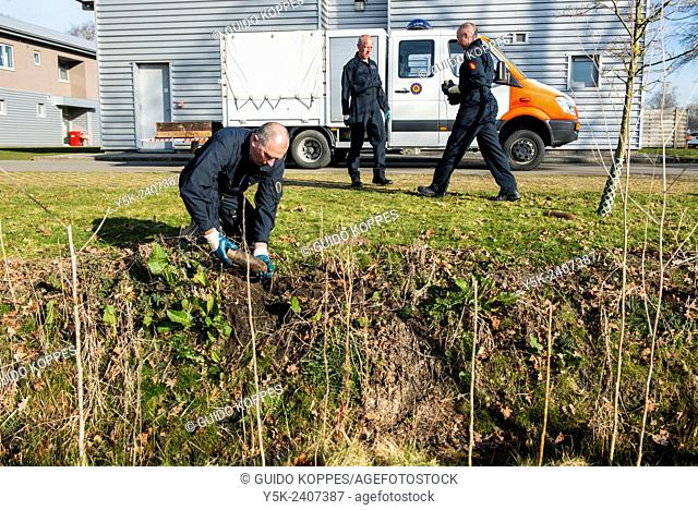 Poelkapelle, Belgium. Army Battalion for Demolition of Explosives. Army corporal recovering live shells and munition from a former World War 1 battle field for...