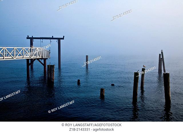 Foggy morning on the Sidney waterfront in British Columbia