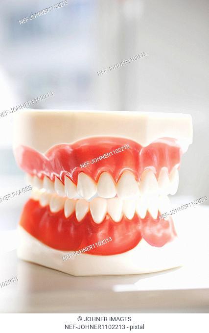Close up of dental mold