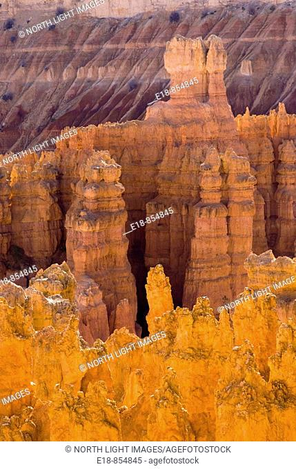 USA, Utah, Bryce Canyon.View of hoodoos in Bryce amphitheater from the rim of the canyon