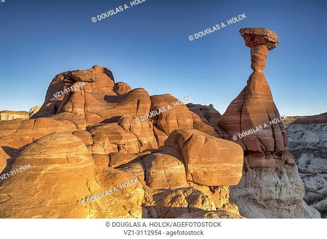 Iconic sandstone toadstool hoodoo catches the setting sun in Paria RImrocks Toadstool Hoodoos, Utah, USA