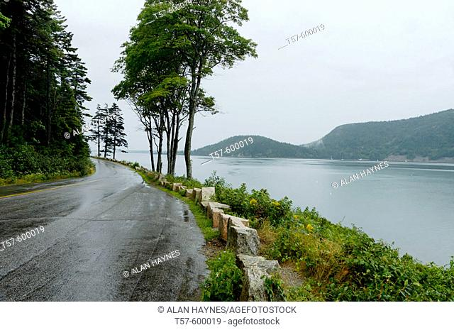 Deserted wet road on rainy day on Sargeant Drive at Somes Sound, Acadia National Park, Maine, USA