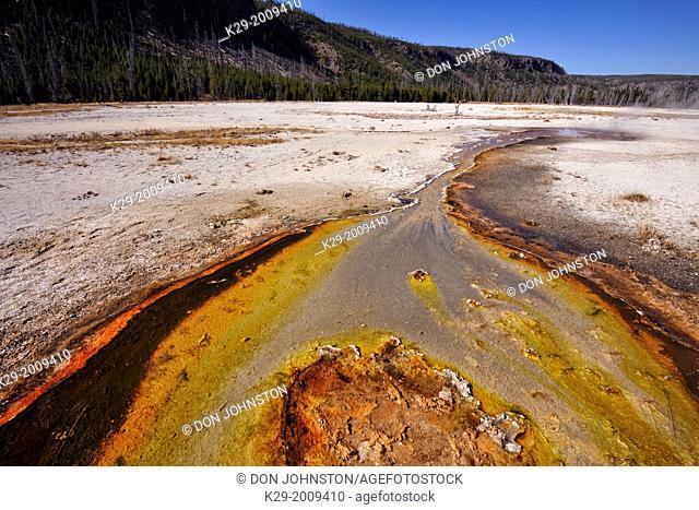Algae and cyanobacteria colonies in thermal outflow near Rainbow Pool, Yellowstone NP, Black Sand Geyser Basin, Wyoming, USA