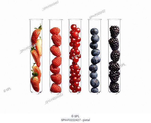 Berries in test tubes