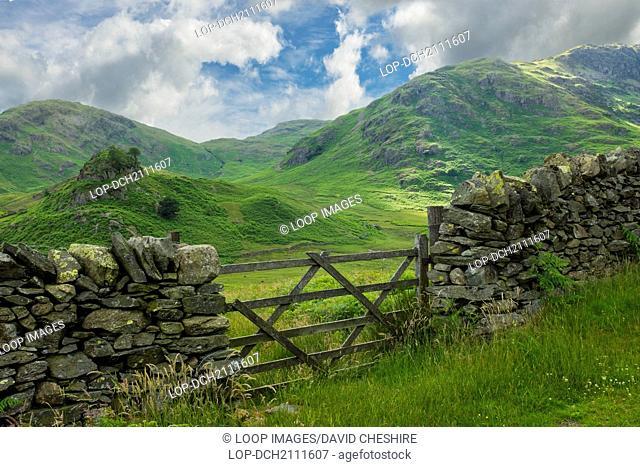 Summer in the Cumbrian fells