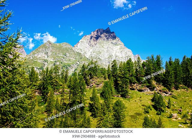 Beautiful mountain landscape, Alpe Devero, Italy