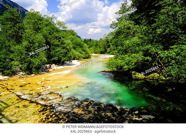 river, Slovenia, national park Triglav, Bohinjsko jezera