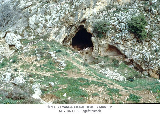 The cave 2.5 km south of Nazareth, Galilee where fossils of early modern Homo sapiens (Homo sapiens sapiens) were found in 1933 by R