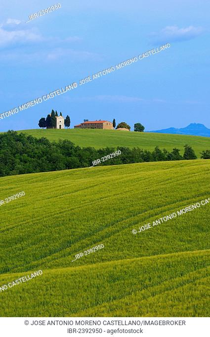 Cappella di Vitaleta. Vitaleta Chapel, Pienza, Val d'Orcia, Orcia Valley, UNESCO World Heritage Site, Siena Province, Tuscany, Italy, Europe