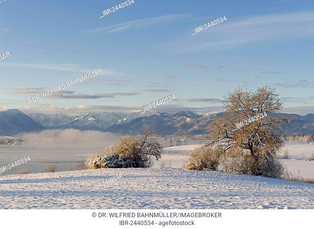 Winter landscape, Lake Riegsee in front of Estergebirge mountains, Wetterstein range and Ammergau Alps with Ettaler Mandl peak, Murnau, Pfaffenwinkel region