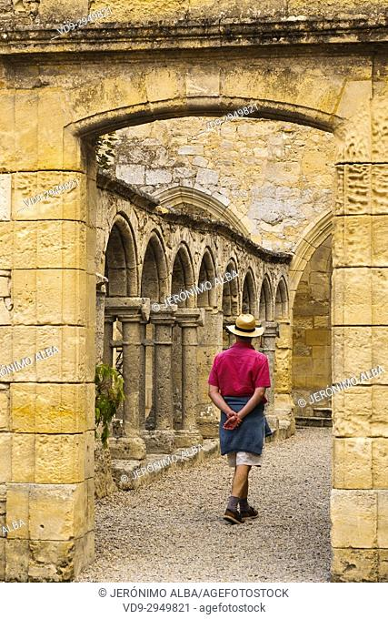 Cordeliers cloister of Franciscan Convent, XIV Century, Saint-Emilion Bordeaux wine region. Aquitaine Region, Gironde Department. France Europe