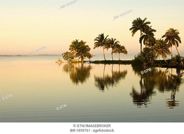 Laguna del Tesoro, Treasure Lagoon at sunrise, Zapata Peninsula, Cuba, Central America
