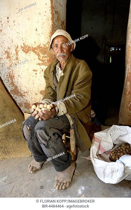 Old man, farmer with potatoes, Avarabohitra Fenomanano village, Tsiroanomandidy district, Bongolava region, Madagascar