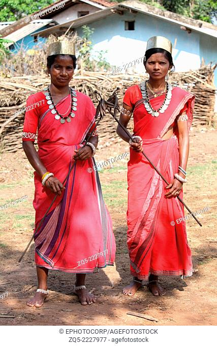 Tribal woman dancers in traditional outfits. Bison Horn Maria tribe, Datalpara, Gamawada, Chhattisgarh, India