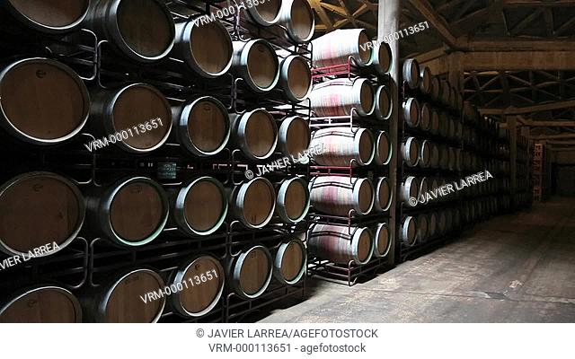 Couple visiting winery, Barrel cellar, Bodegas Olarra, Logroño, La Rioja, Spain